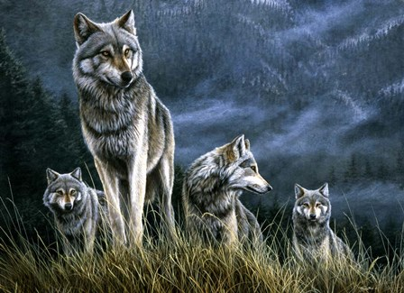 Wolf Pack by Dr. Jeremy Paul art print